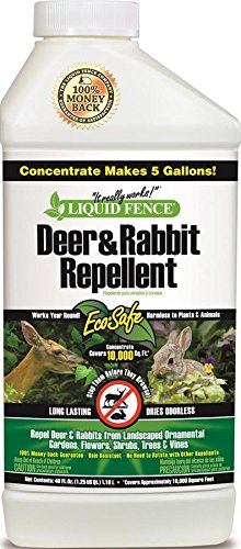 Liquid Fence Deer Repellent Concentrate Review You Won T Be Disappointed Dealing With Deer